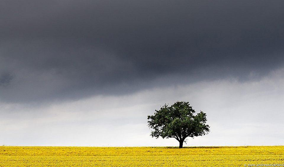 Cómo hacer fotos de paisaje con un teleobjetivo (trucos y consejos)