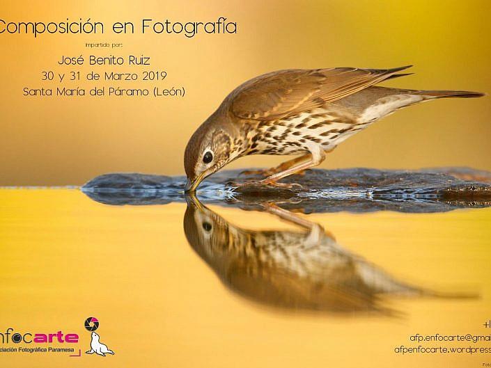 Curso composición en fotografía de José Benito Ruiz