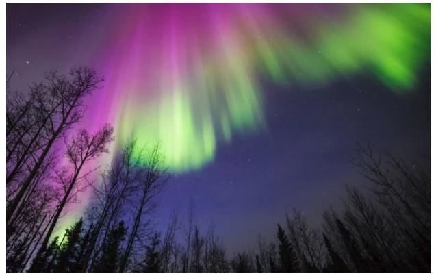 Es temporada de mágicas auroras, ¿dónde viajar a observarlas en directo?