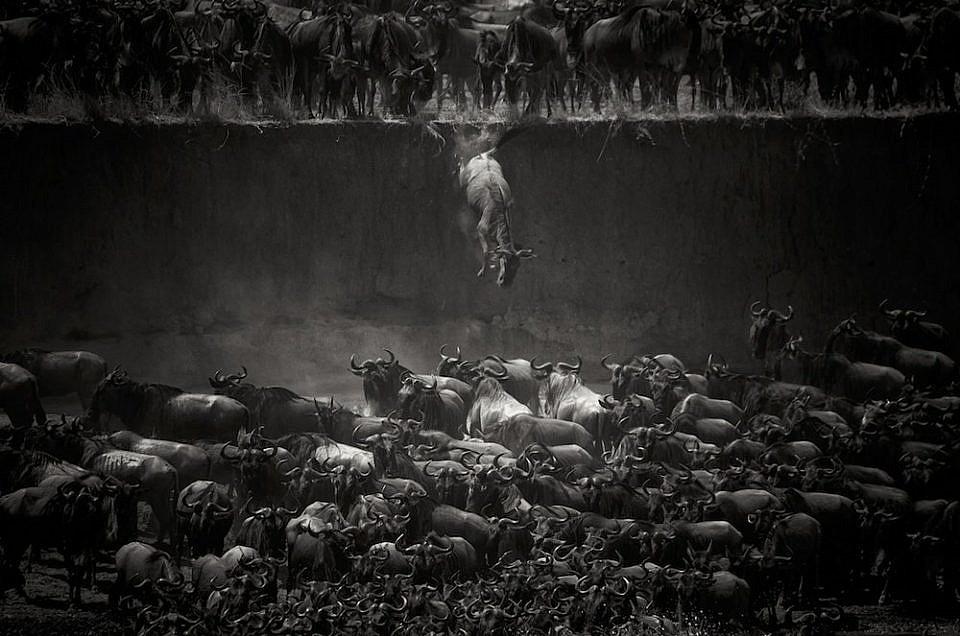 Las mejores fotografías en blanco y negro de 2017 según la prestigiosa revista MonoVisions
