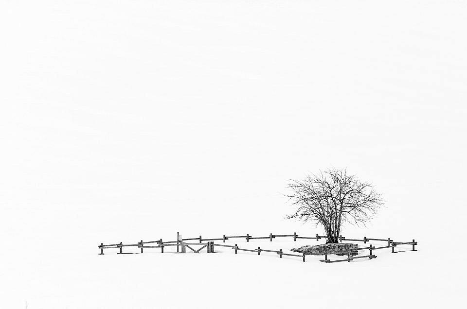 Fotografía en Blanco y Negro: la Guía Más Completa